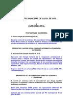 RESUM DEL PLE MUNICIPAL DE JULIOL DE 2013.pdf