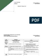 proiect didactic inspectie definitivat simultan clasa pregatitoare si clasa I