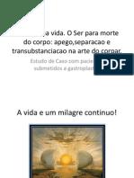APRESENTACAO UFPA