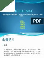 Tutorial m14