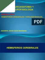 Semana 6-Hemisferios Cerebrales y Nucleos Basales
