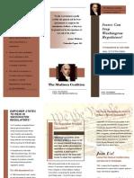 Madison Brochure