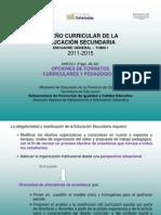 Formatos Curriculares (15-03-11)