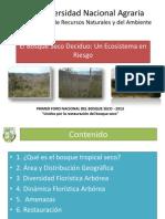 1 Foro Bosque Seco León Lunes 5 Agosto