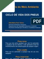 Zilda Maria Faria Veloso Ciclo Vida Pneus