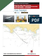 SAAP Terminal Regasificadora / Gas sayago / Tomo I