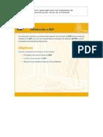 SAP-01[1]