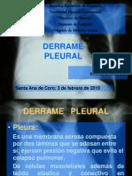 derramepleural-100430063425-phpapp01