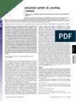 Cooperative Nanomaterial Tumors