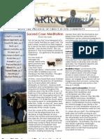 Fall Newsletter 2013