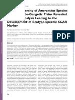 DIVERSIDAD GENETICA AMARANTO.pdf