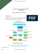 Niveles Jerárquicos de la Empresa u Organización