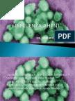 Influenza Ah1n1 Final