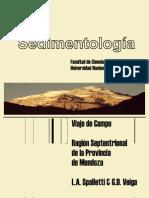 Guia_campo Sedimentologia (Spaletti)
