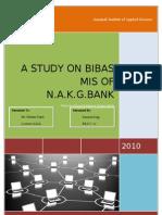 Mis Project- Bibas