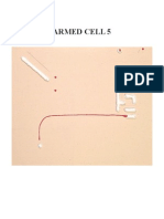 ARMED CELL 5