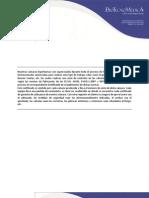 Cotizacion Monoplaza GENESIS ACE - Febrero 2012