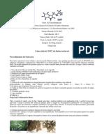 Como Extrair DMT de Fontes Naturais