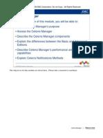 celerra mgr.pdf