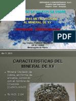Informe Lixiviación-Cristalización Mineral de XV
