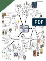Microorganisms Mind Map