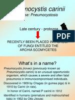 Pneumocystis Cariinii 29 2 2013