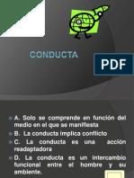 Conducta y Procesos Cognitivos