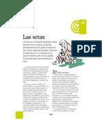 15setas.pdf