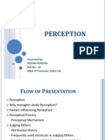 Perception.pptx
