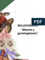 Solucionario Gua BL 9 Meiosis y Gametogenesis