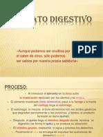 aparato digestivo1