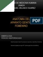 Facultad de Medicina Humana-embriologia Aparato Genital Femenino