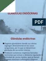 GLÁNDULAS ENDÓCRINAS