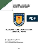 nocionesfundamentalesdederechopenal-110411120621-phpapp01