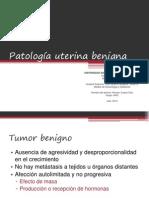 Patología uterina benigna