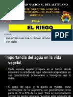 3.- EL RIEGO