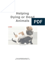 Helping Dying or Dead Animals