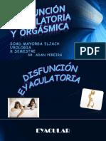 DISFUNCIÓN EYACULATORIA Y  ORGÁSMICA mi expo