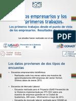 Presentación USAID Reforma educativa BRANDING VPP