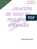luxacion del codo en pequeñas especies.docx