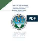 Introduction Al Business Process Management