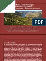 Vindimas em Portugal_Eugênio de Sá