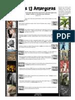 13 AMARGURAS.pdf