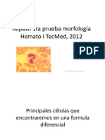 Repaso 1ra prueba morfología Hemato I TecMed