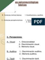 funciones-psiconeurolc3b3gicas-bc3a1sicas