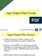 Input Output Files Format