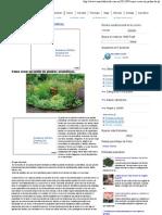 Cómo crear un jardín de plantas aromáticas