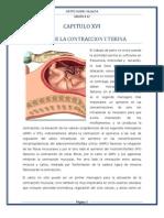 CAPITULO XVI.docx