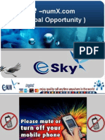 E-numX.com Business Opportunity Presentation ( International Market )
