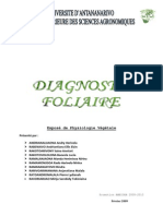 Diagnostic Foliaire